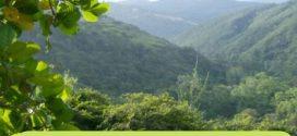 Ambientalistas se reunirán para retomar lucha por la ampliación del Parque Nacional Terepaima