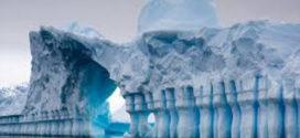 Científicos descubren criaturas nunca vista antes a 3500 metros bajo el hielo